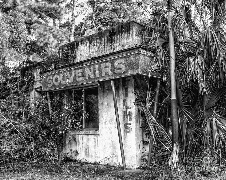 Old Florida Welcome Photograph  - Old Florida Welcome Fine Art Print