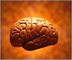 The period from birth to three years is a critical time in the development of a child's brain. Animal studies and some previous epidemiological studies have sho