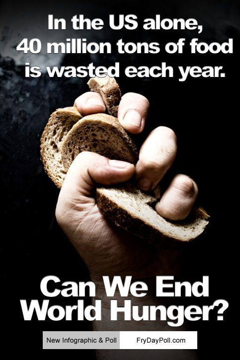 In the #US alone, 40 Million Tons of food is wasted each year. Can We End World #Hunger?    We must take part in this poll. Great poll @Mapsofworld