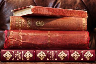 Antique Books via Belle & York  #library #antique #Dickens #Carroll #Alice #Hawthorne