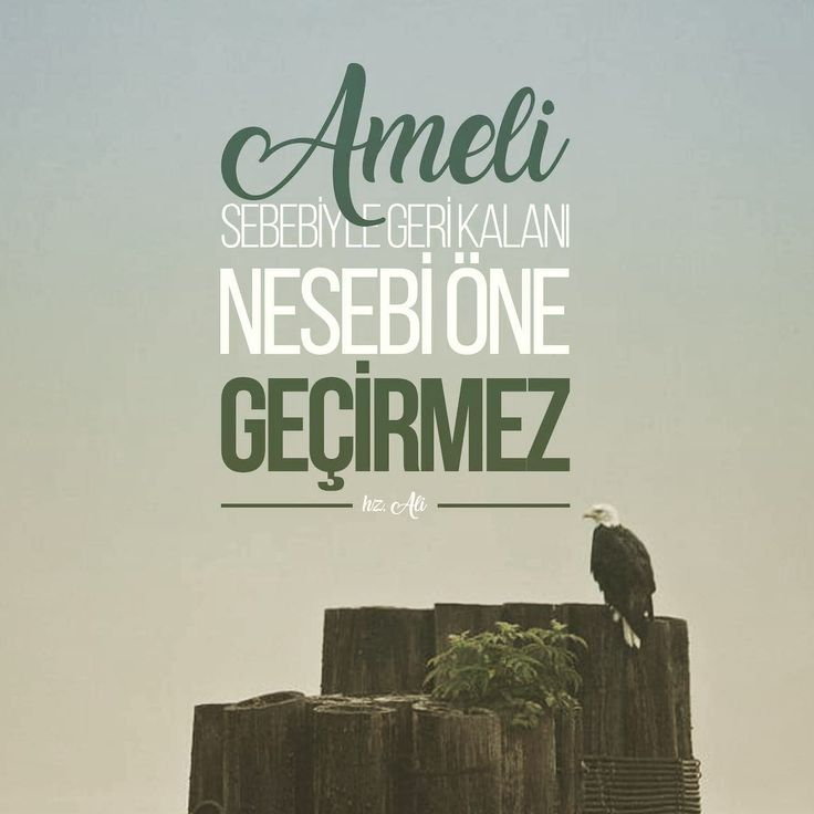 Ameli sebebiyle geri kalanı, nesebi öne geçirmez. [Hz. Ali ra]  #hzali #sözler #amel #ibadet #neseb #soy #ileri #söz #ilmisuffa