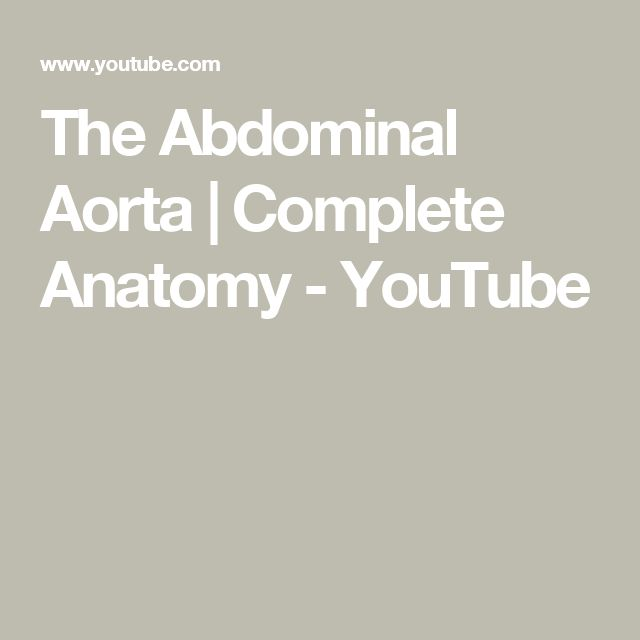 The Abdominal Aorta | Complete Anatomy - YouTube