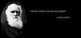 Bildergebnis für diş çekimi caps