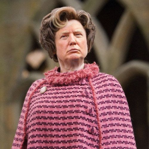 JUST LOOK AT IT. LOOK AT THE TRUMPBRIDGE. | You Will Never Be Able To Unsee Donald Trump As Dolores Umbridge