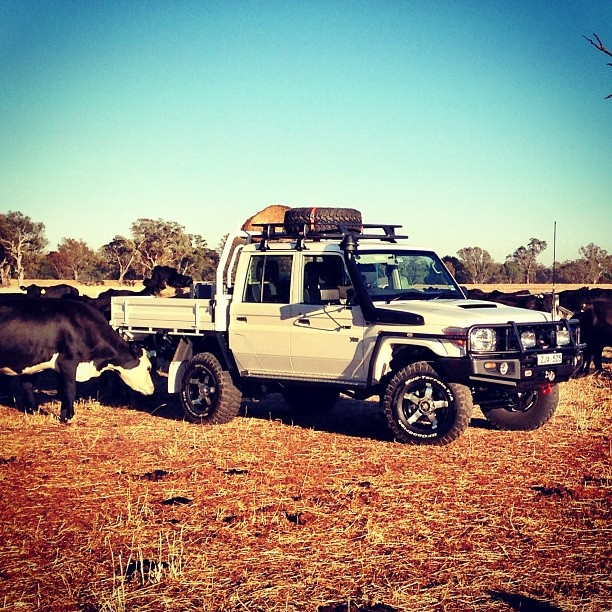 50 Best 79 Dual Cabs Images On Pinterest Toyota Land