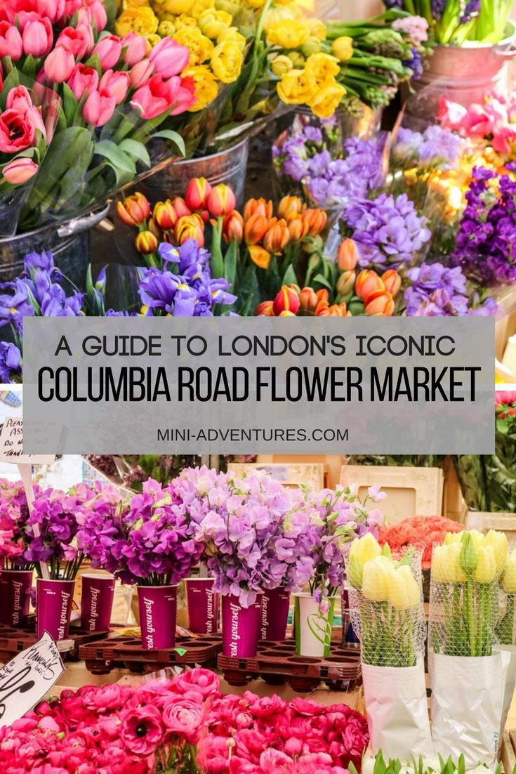 The London To Do List A Guide To Columbia Road Flower Market Columbia Road Flower Market Flower Market Columbia Road