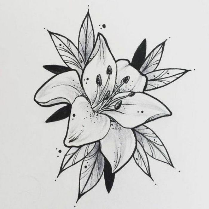 1001 Ideas De Dibujos De Flores Faciles Y Bonitos Dibujos Flores Dibujadas A Lapiz Dibujos De Flores