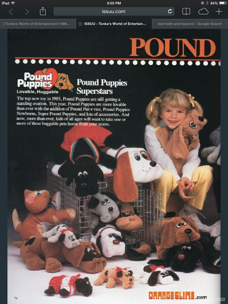 17 Best images about Pound Purries & 80s era toys ...