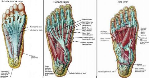 Back pain, knee pain, and hip pain could all be caused by weak feet. These foot strengthening exercises are sure to toughen up your feet and get you pain free.