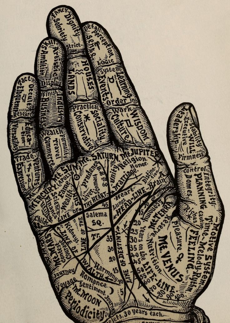 Images modified by Amy M. Lavine based on plates from The science of palmistry and its relations to astrology and phrenology (1901). Also, some background information on palmistry and hands in art is...