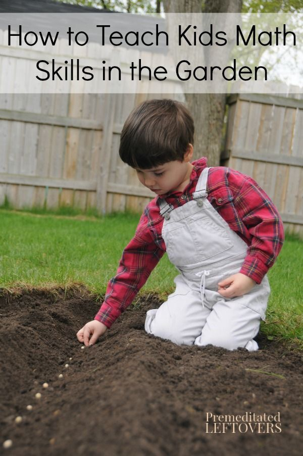 You can't grow a garden without doing math, so why not make a math lesson of it! Here are some tips for How to Teach Kids Math Skills in the Garden.