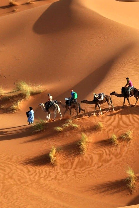 The Sahara Is Largest Hot Desert And Third After Antarctica Arctic