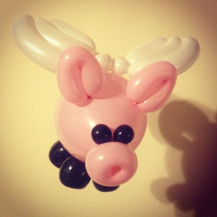 Day 105: Flying Pig