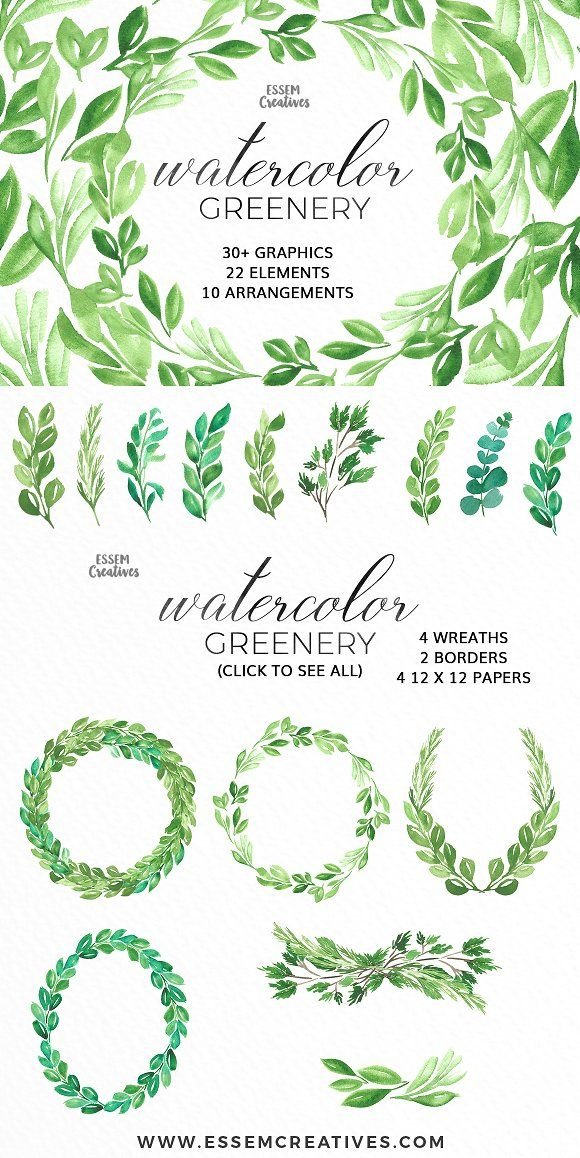 watercolor greenery leaves clipart by essem creatives on