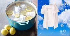 Como deixar suas roupas branquinhas sem usar cloro/água sanitária   Cura pela Natureza