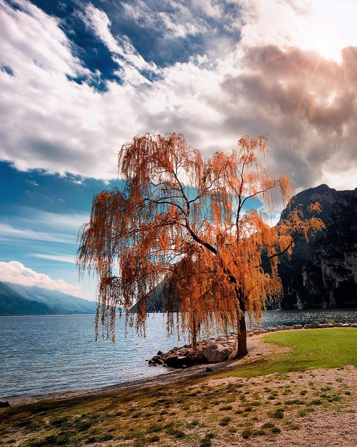 Riva del Garda beach - Italy  What is our favorite landscape? by matteorighiphotography