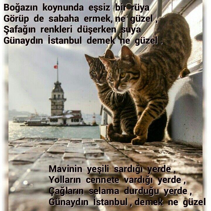 Günaydın  İstanbul