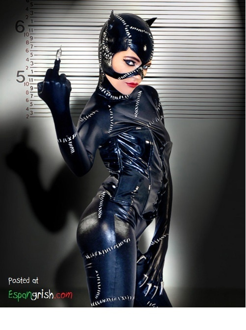 Batman-Rises-Cat-Woman-Costume (7)