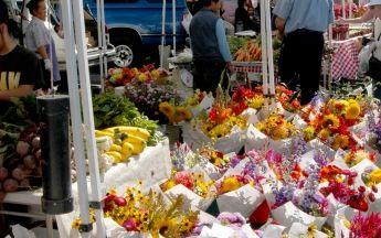 Everett Farmers Market | Snohomish County Tourism Bureau