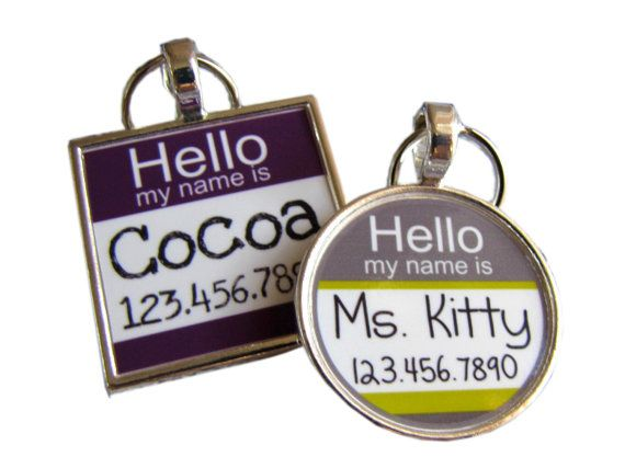 just bought this for Mr. E! adorable!    The Original Hello My Name Is Silver Pet ID by sofacitysweethearts, $9.99