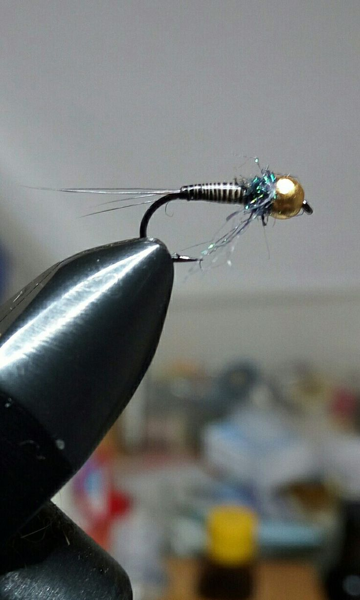 Quills nymph
