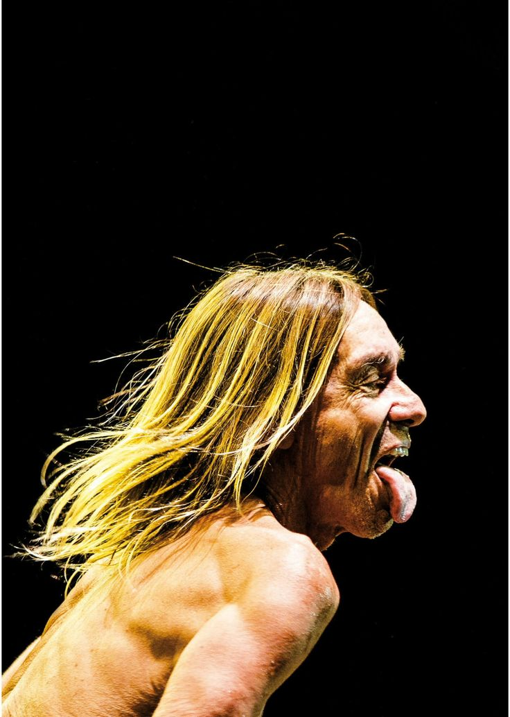 521 best Iggy POP images on Pinterest  Iggy pop Music