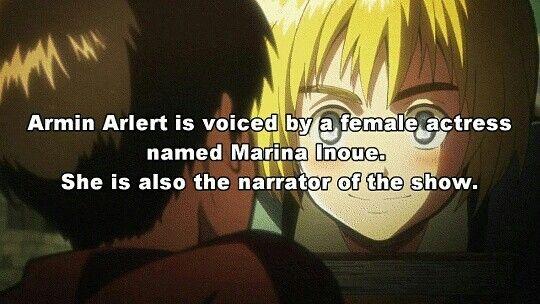 Shingeki no Kyojin facts. Anime facts. Attack on Titan. Armin Arlert. Marina Inoue. Manga. Anime