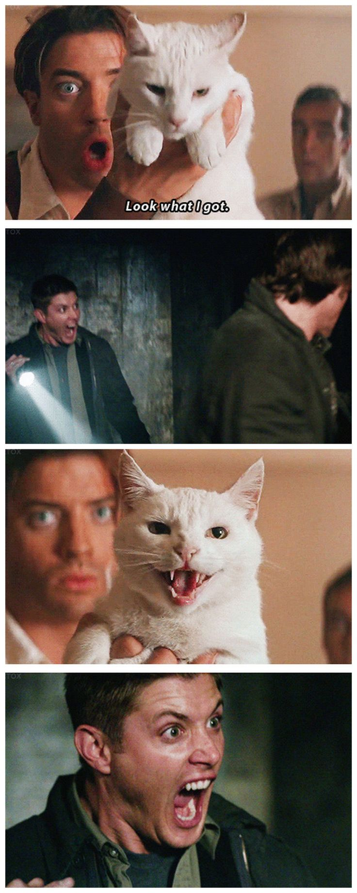 [gifset] The SPN fandom on hiatus! - I don't quite understand why but this is hilarious to me. - Mummy crossover