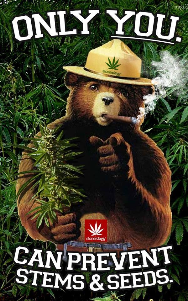 smokey bear sexy girl