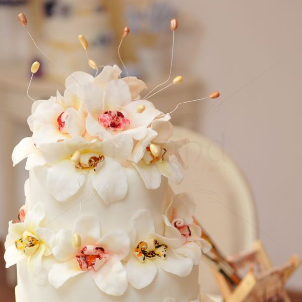 Detaliu dintr-un tort de nunta decorat cu flori de orhidee albe.  Pret: 960 lei (6 kg).