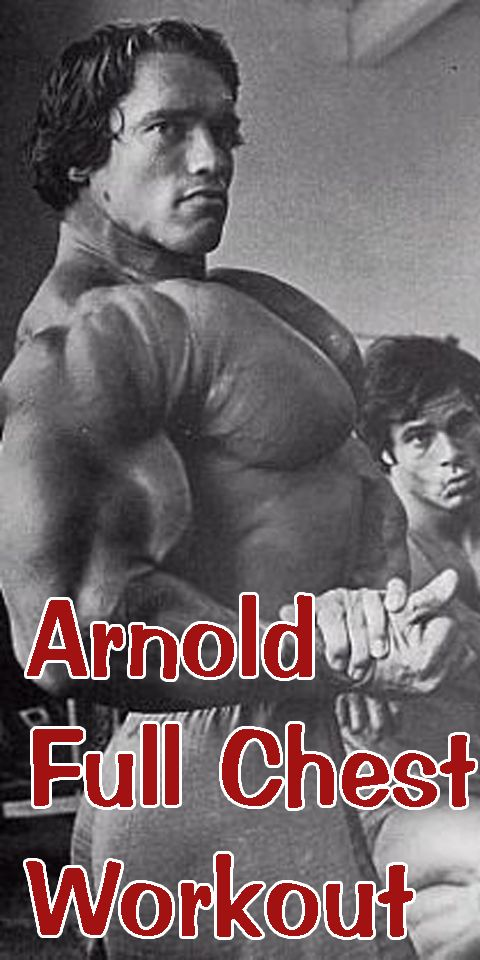 Arnold Schwarzenegger Chest and Tricep Workout http://www.revolza.com/arnold-schwarzenegger-chest-tricep-workout/