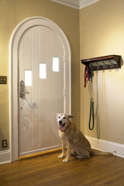 38 best protecting doors from dog scratches images on pinterest is your dog scratching up your beautiful doors prevent pet scratches by using the door shield made from tough crystal clear plastic this product is eventshaper