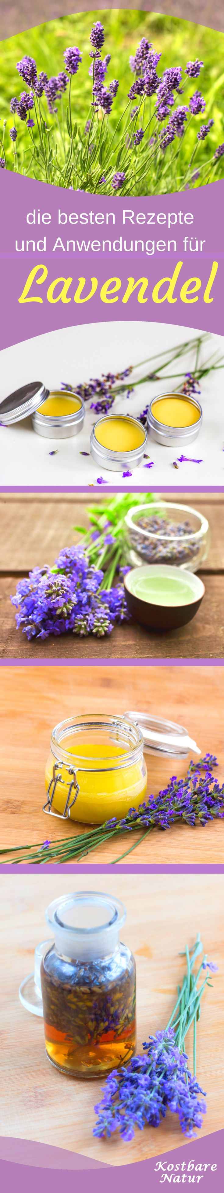 kuhles 7 nuetzliche eigenschaften von lavendel der blaue alleskoenner aus der natur tolle pic der cfdbbdba