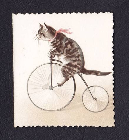 Victorian Christmas Card Cat Kitten Penny Farthing Bicycle Helena Maguire Bike on Wanelo