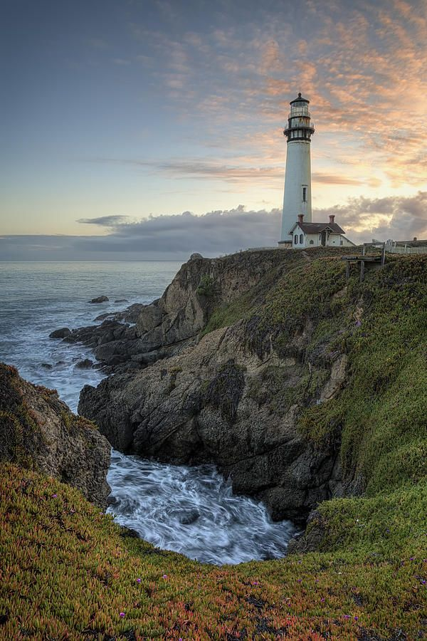 Pigeon Point Lighthouse At Sunset Photograph