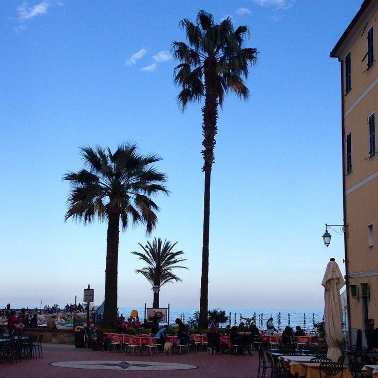 Laigueglia, palmtrees