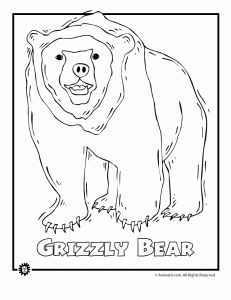 Endangered Grizzly Bear 231x300 Animals Coloring Pages From North America