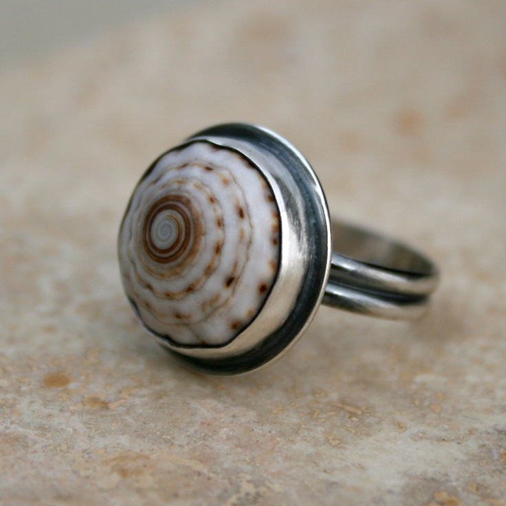 shell ring jewelry shell and ring