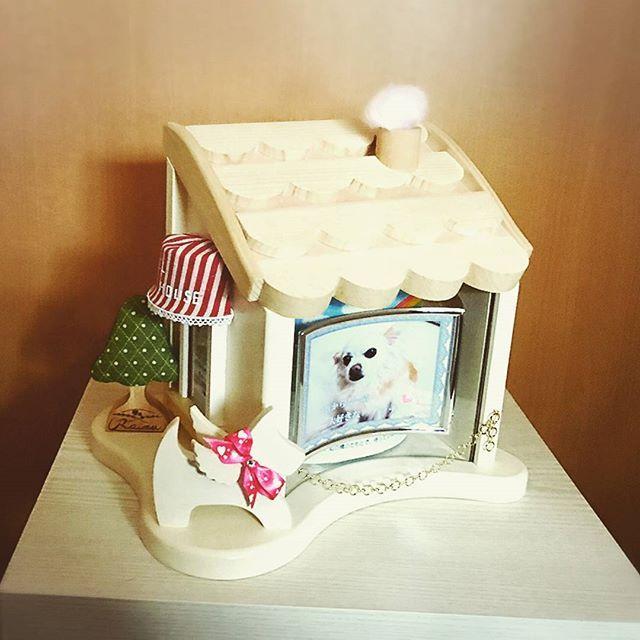 ちいさな家族の第2のおうち 「天使のおうち」 4寸までのお骨ツボが納まります。 パイン素材のこんな可愛い祭壇だったら、毎日笑顔で話しかけてあげられるかな。 #天使のおうち #祭壇 #第2のおうち #ペットメモリアル #ペット供養 #手元供養 #愛犬 #愛猫 #ちいさな家族 #家族 #長野県松本市 #虹の架け橋ぷう