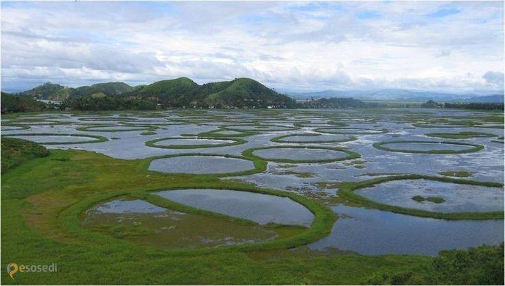 озеро Локтак – #Индия #Манипур (#IN_MN) Индия (если речь, конечно, не о Гоа) - довольно экзотическое направление для путешествий и отдыха. Удивительное озеро Локтак с плавающими островами Пхумди - место, которое обязательно стоит посетить отважным исследователям этой небогатой, но очень красивой страны. http://ru.esosedi.org/IN/MN/1000133587/ozero_loktak/