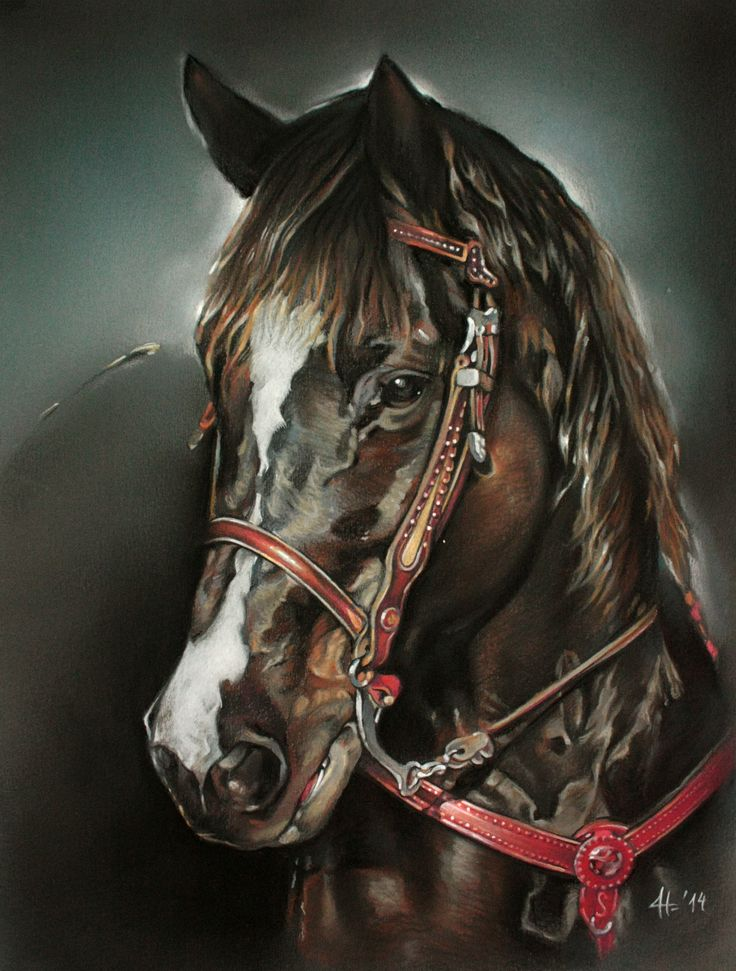 Daniela Nikolova-Sidiropoulou   Horse art  Eclipse 25/33cm pastel
