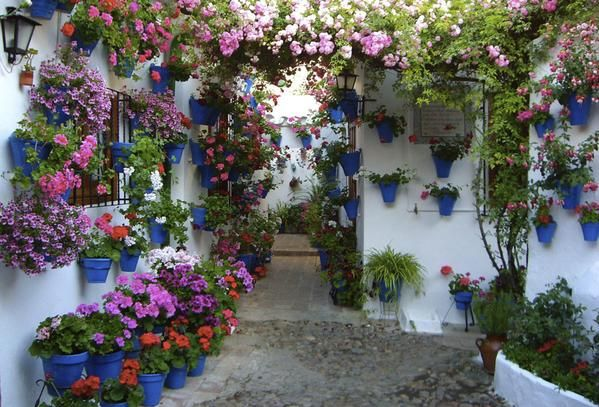 "From ""El encanto de los patios cordobeses"" story by jvgodoy on Storify — https://storify.com/jvgodoy/el-encanto-de-los-patios-cordobeses"