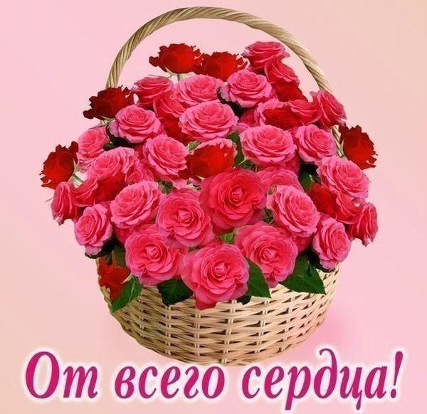 Салютом, открытки с кисами и цветами от всего сердца