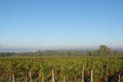 [Gironde] Saint-Gervais - Tauriac Boucle qui offre de splendides points de vue sur la Dordogne, depuis la montée vers le château du Bouilh depuis le port de Plagne jusqu'à la mairie de Saint-Gervais. A faire par une belle matinée ensoleillée pour profiter du spectacle. Le reste du parcours est moins accidenté.