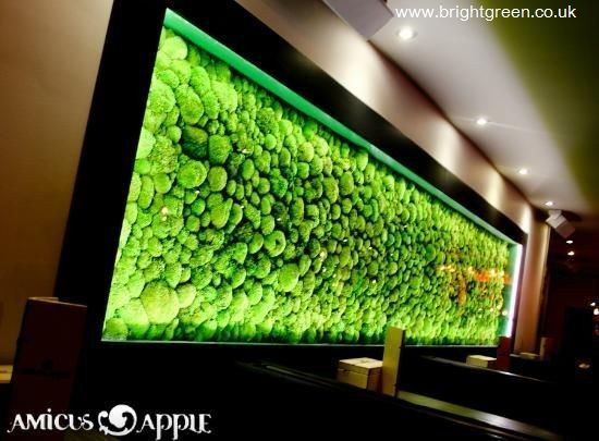Bun Moss Panel made for a Night Club which was installed into a bespoke light panel
