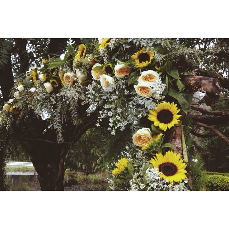   floral archway    Floral archway at yesterday's country wedding. Incorporating the brides favourite flower sunflowers