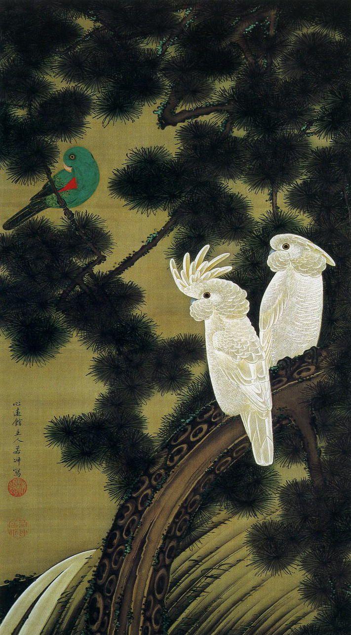 老松鸚鵡図
