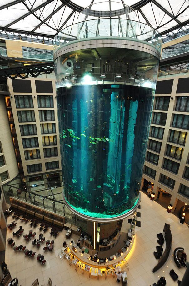 The Radisson Blu Hotel In Berlin, Germany may look like just another luxury hotel, however once you enter it, you will be blown away by the enormous 82-feet high aquarium in the heart of the hotel's lobby atrium. Luxury Hotel Interior Designs #hotelinteriordesings