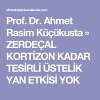 Prof. Dr. Ahmet Rasim Küçükusta » ZERDEÇAL KORTİZON KADAR TESİRLİ ÜSTELİK YAN ETKİSİ YOK