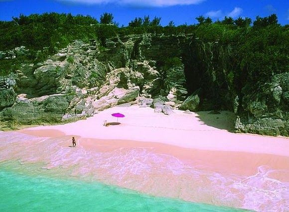Pink Sands Beach, Harbour Island, Bahamas-The color comes from small granules of coral mixing with white sand.(outstandingplaces.com)